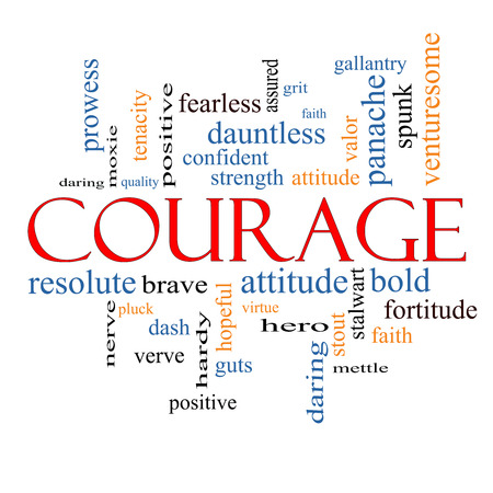 spunk: Courage Word Cloud Concept with great terms such as strength, gallantry, bold and more.