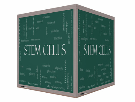 somatic: Stem Cells Word Cloud Concept on a 3D cube Blackboard with great terms such as research, human, medical and more. Stock Photo