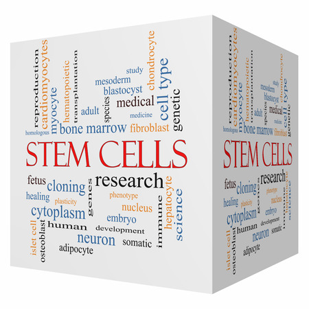 Stem Cells 3D cube Word Cloud Concept with great terms such as research, human, medical and more.
