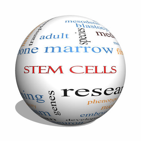 Stem Cells 3D sphere Word Cloud Concept with great terms such as research, human, medical and more. Stock Photo