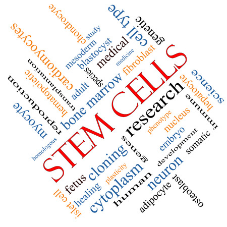 Stem Cells Word Cloud Concept angled with great terms such as research, human, medical and more. photo
