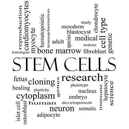 Stem Cells Word Cloud Concept in black and white with great terms such as research, human, medical and more. photo