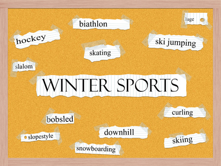 luge: Winter Sports Corkboard Word Concept with great terms such as skating, luge, slalom and more. Stock Photo