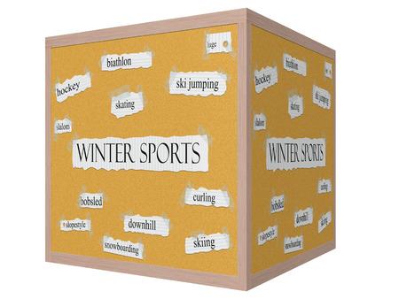 luge: Sport invernali cubo 3D Corkboard Word concetto con termini grandi come il pattinaggio, slittino, slalom e altro ancora.