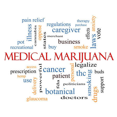 Medical Marijuana Word Cloud Concept met grote termen als therapie, legaliseren, geduldig en meer. Stockfoto - 26033322