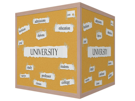 University 3D cube Corkboard Word Concept with great terms such as tests, education, diploma and more.
