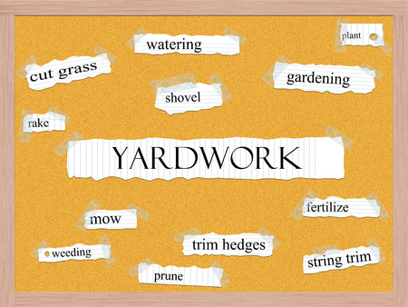 cut grass: Yardwork Corkboard Word Concept with great terms such as gardening, plant, cut grass and more. Stock Photo