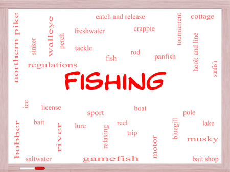 bluegill: Fishing Word Cloud Concept on a Whiteboard with great terms such as bobber, lure, pole and more.