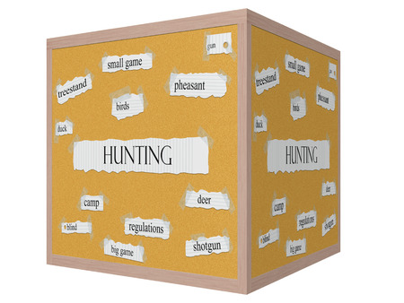 Hunting 3D cube Corkboard Word Concept with great terms such as pheasant, gun, birds and more. photo
