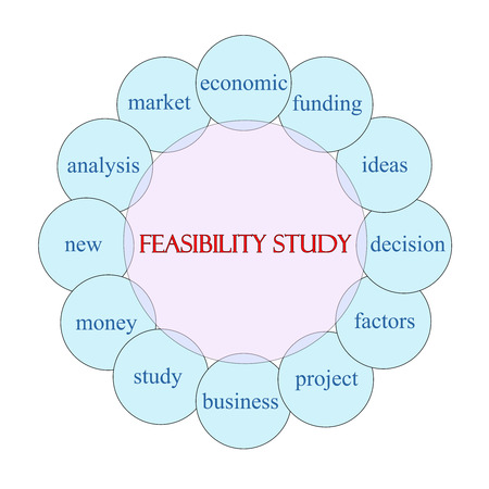 feasibility: Feasibility Study concept circular diagram in pink and blue with great terms such as funding, ideas, decision and more.