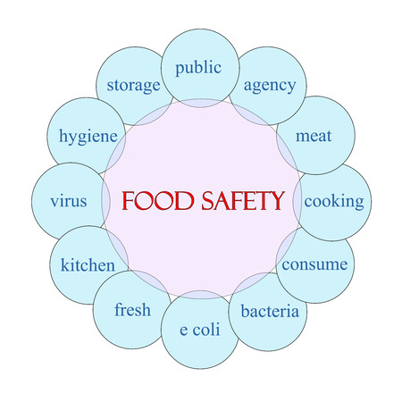 Food Safety concept circular diagram in pink and blue with great terms such as public, agency, bacteria and more. Stock Photo