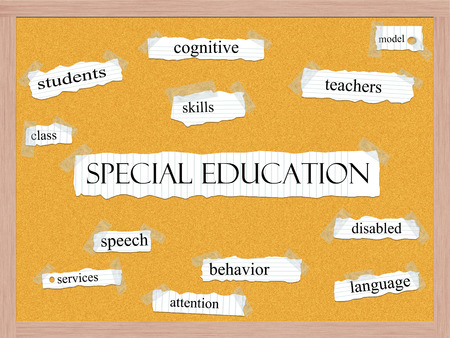 Special Education Corkboard Word Concept with great terms such as students, class, skills, model and more.