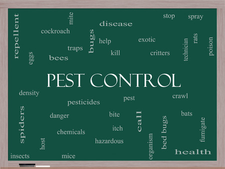 Pest Control Word Cloud Concept on a Blackboard with great terms such as bugs, poison, rates and more. photo