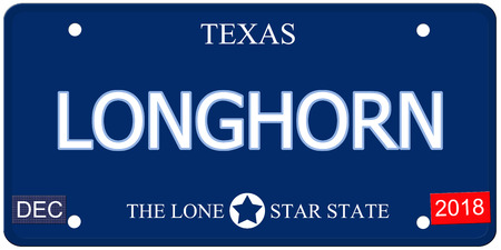 Een nep-imitatie Texas kenteken met het woord LONGHORN en The Lone Star State het maken van een geweldig concept.