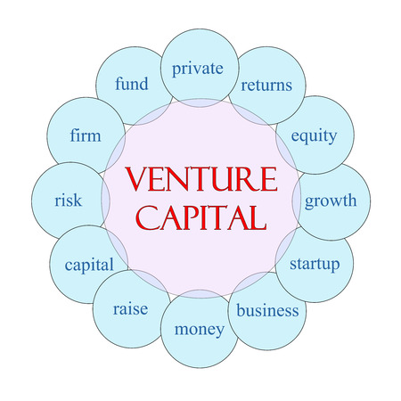 Venture Capital concept circular diagram in pink and blue with great terms such as private, returns, equity and more. Stock fotó