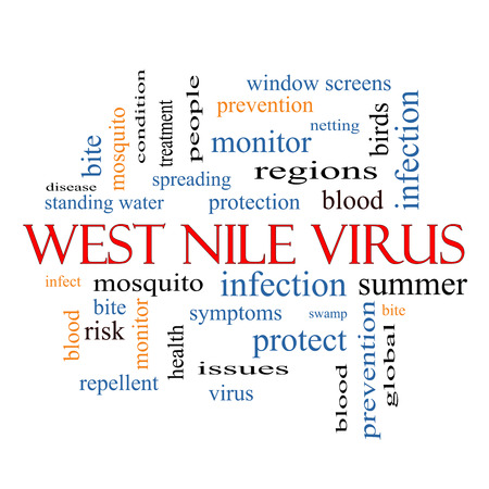 West Nile Virus Word Cloud Concept with great terms such as mosquito, bite, infection and more. photo