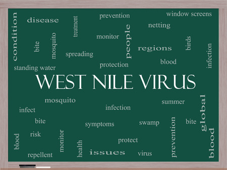 West Nile Virus Word Cloud Concept on a Blackboard with great terms such as mosquito, bite, infection and more. photo