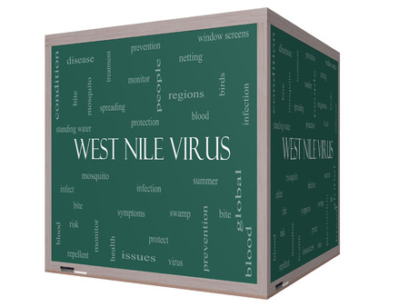 West Nile Virus Word Cloud Concept on a 3D Blackboard with great terms such as mosquito, bite, infection and more. photo