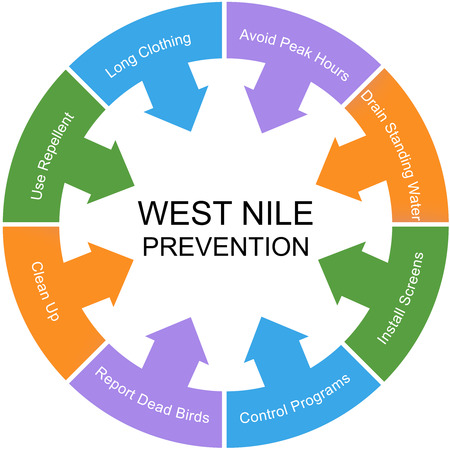 virus protection: West Nile Prevention Word Circle Concept with great terms such as repellent, screens, water and more.