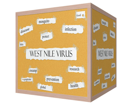 West Nile Virus 3D cube Corkboard Word Concept with great terms such as mosquito, protect, bites and more. photo