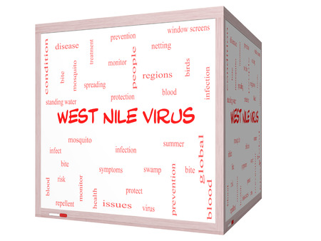 West Nile Virus Word Cloud Concept on a 3D cube Whiteboard with great terms such as mosquito, bite, infection and more. photo