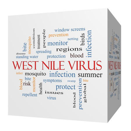 West Nile Virus 3D cube Word Cloud Concept with great terms such as mosquito, bite, infection and more. photo