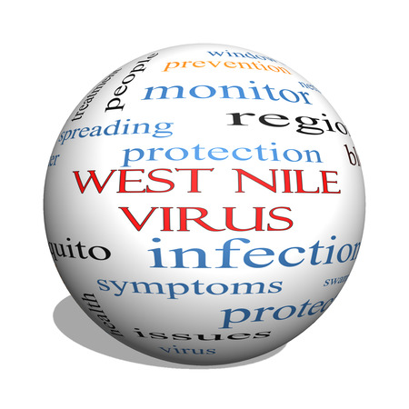 West Nile Virus 3D sphere Word Cloud Concept with great terms such as mosquito, bite, infection and more. photo