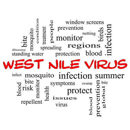nile: West Nile Virus Word Cloud Concept in red caps with great terms such as mosquito, bite, infection and more. Stock Photo