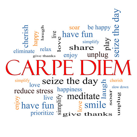 Carpe Diem Word Cloud Concept with great terms such as love, seize, the day and more.