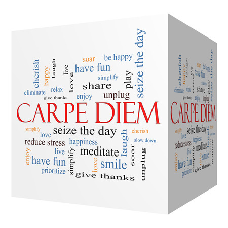 carpe diem: Carpe Diem 3D cube Word Cloud Concept with great terms such as love, seize, the day and more. Stock Photo