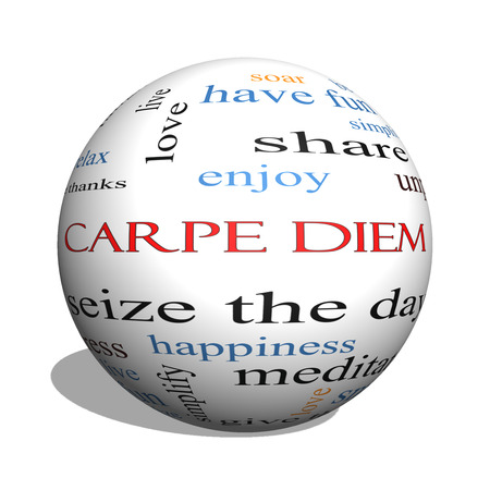 Carpe Diem 3D sphere Word Cloud Concept with great terms such as love, seize, the day and more.