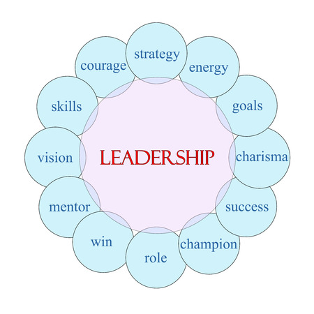 Leadership concept circular diagram in pink and blue with great terms such as strategy, energy, goals and more.
