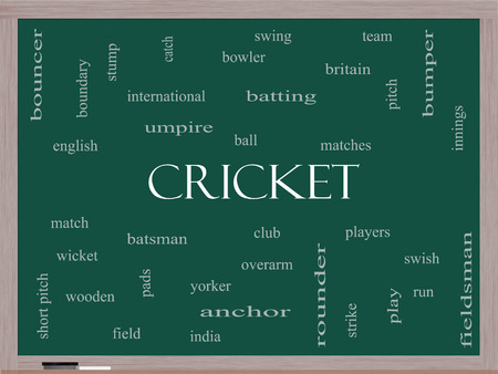 cricket stump: Cricket Word Cloud Concept on a Blackboard with great terms such as batsman, wicket, ball and more.