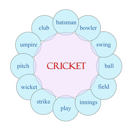 wicket: Cricket concept circular diagram in pink and blue with great terms such as batsman, swing, wicket and more.