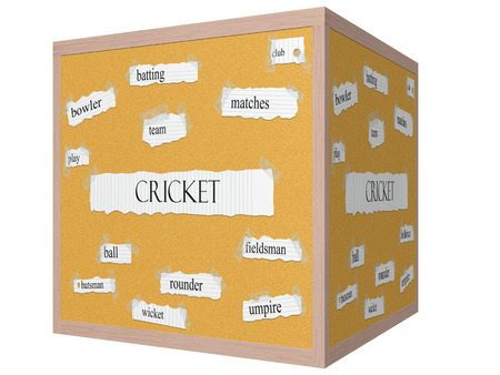 rounder: Cricket 3D cube Corkboard Word Concept with great terms such as batting, play, rounder and more.