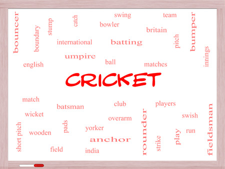 rounder: Cricket Word Cloud Concept on a Whiteboard with great terms such as batsman, wicket, ball and more.