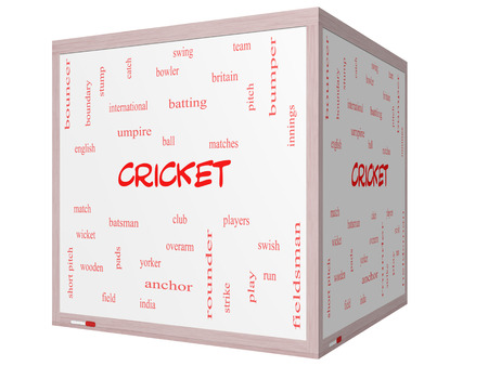 Cricket Word Cloud Concept on a 3D cube Whiteboard with great terms such as batsman, wicket, ball and more.