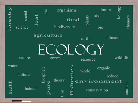 Ecology Word Cloud Concept on a Blackboard with great terms such as green, resource, organic and more. photo