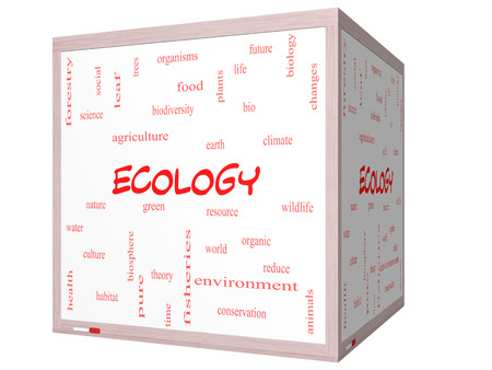 Ecology Word Cloud Concept on a 3D cube Whiteboard with great terms such as green, resource, organic and more. photo