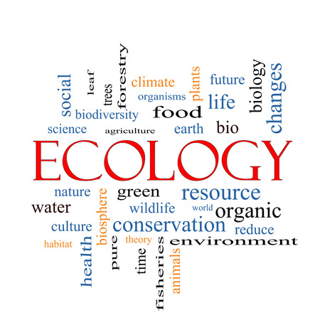 Ecology Word Cloud Concept with great terms such as green, resource, organic and more. photo
