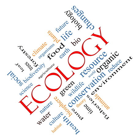 Ecology Word Cloud Concept angled with great terms such as green, resource, organic and more. photo