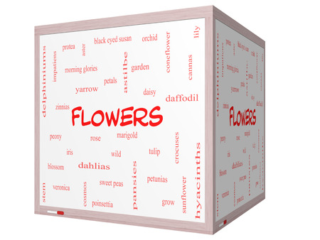 yarrow: Flowers Word Cloud Concept on a 3D cube Whiteboard with great terms such as rose, tulip, daisy and more.