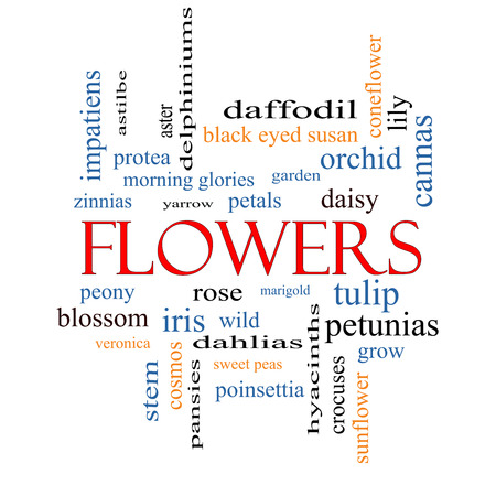 Flowers Word Cloud Concept with great terms such as rose, tulip, daisy and more. photo