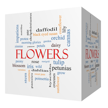 yarrow: Flowers 3D cube Word Cloud Concept with great terms such as rose, tulip, daisy and more.