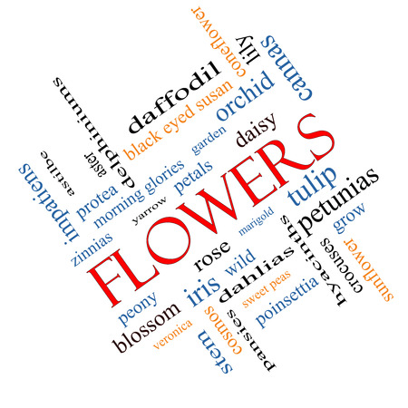 yarrow: Flowers Word Cloud Concept angled with great terms such as rose, tulip, daisy and more.
