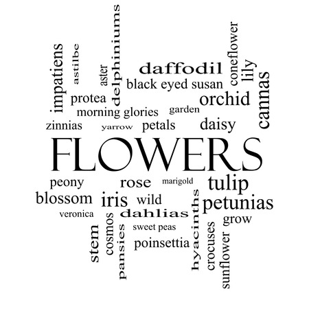yarrow: Flowers Word Cloud Concept in black and white with great terms such as rose, tulip, daisy and more. Stock Photo