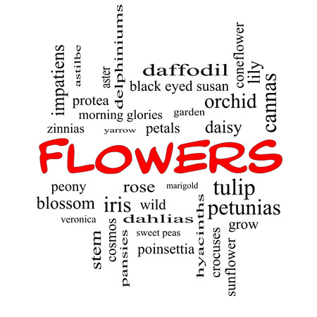 yarrow: Flowers Word Cloud Concept in red caps with great terms such as rose, tulip, daisy and more.