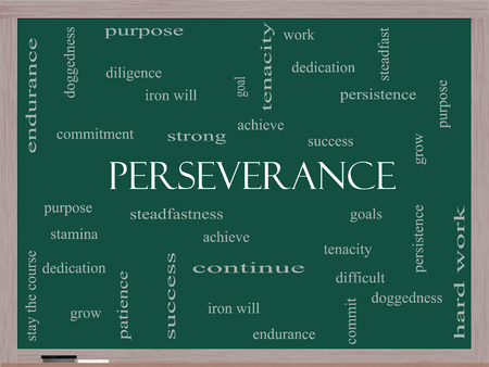 perseverance: Perseverance Word Cloud Concept on a Blackboard with great terms such as endurance, doggedness, purpose and more.