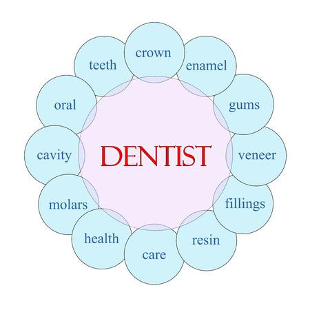 molares: Concepto Dentista diagrama circular en rosa y azul con grandes términos como la corona, el esmalte, las encías y mucho más.