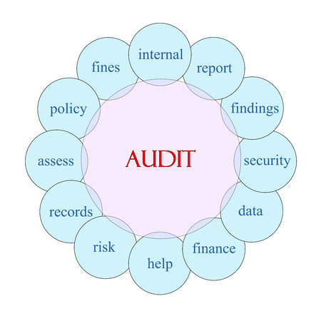 Audit concept circular diagram in pink and blue with great terms such as internal, report, findings and more.